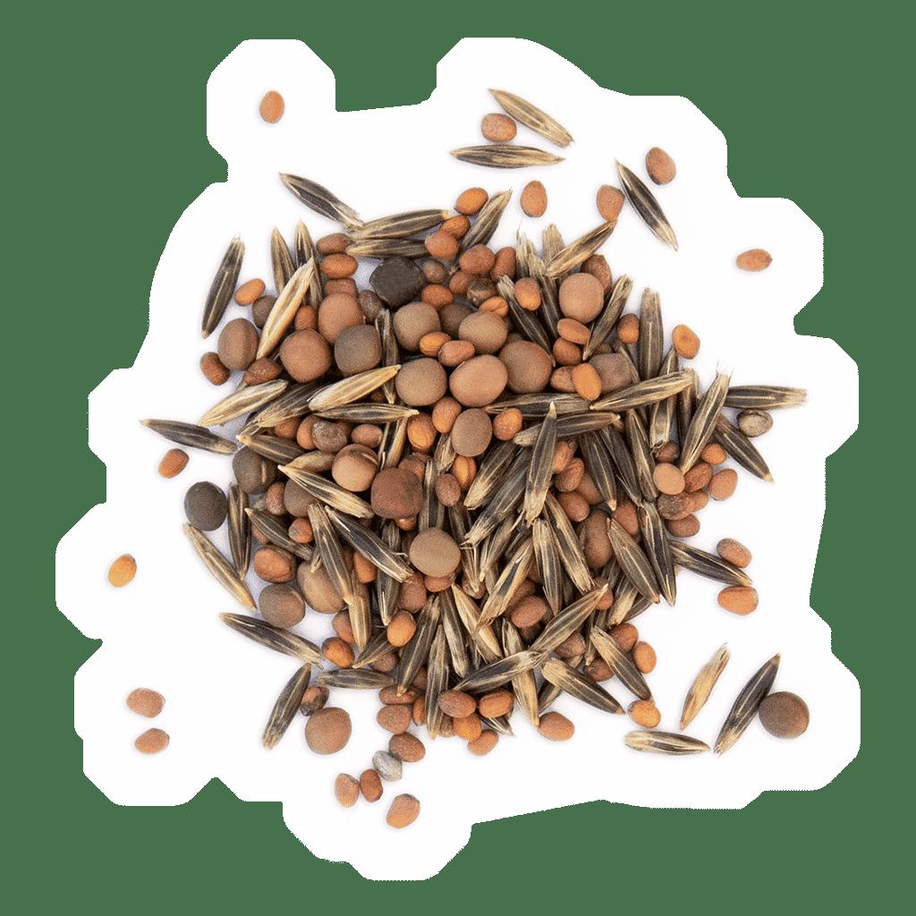 MFG KARTOFFEL SPEZIAL Ertrags- und Qualitätsgarant für den Kartoffelanbau