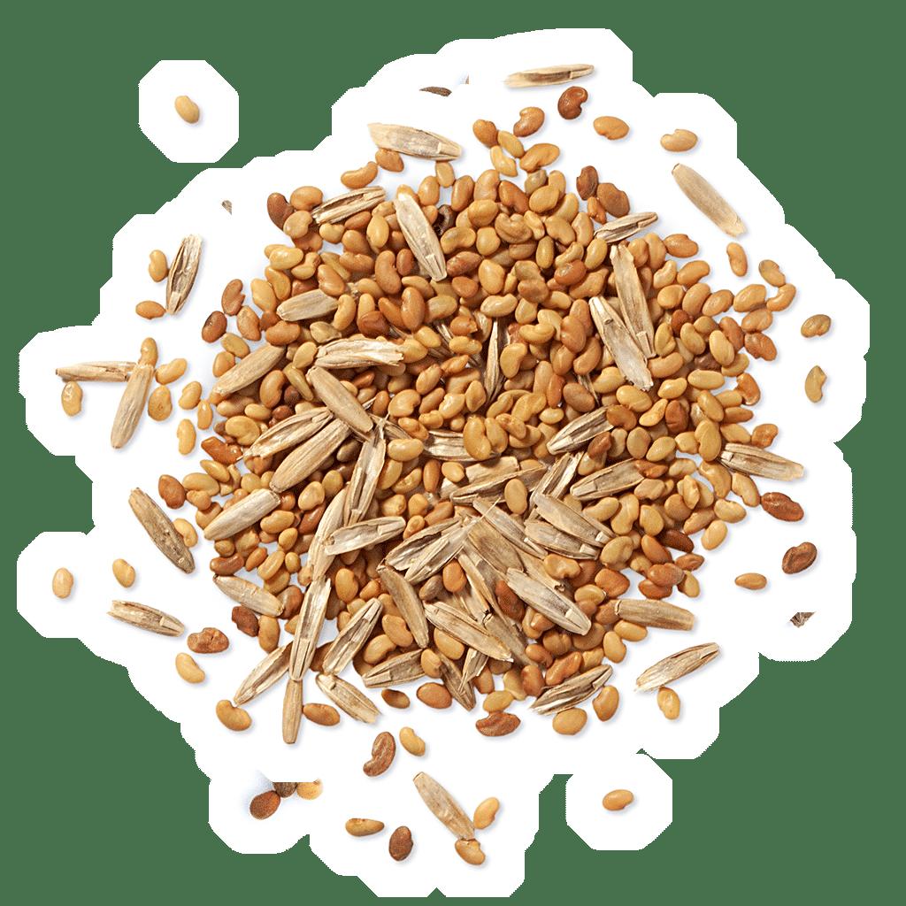 MFG LEGU-GRAS-MIX Hochwertige Futterpflanzenmischung
