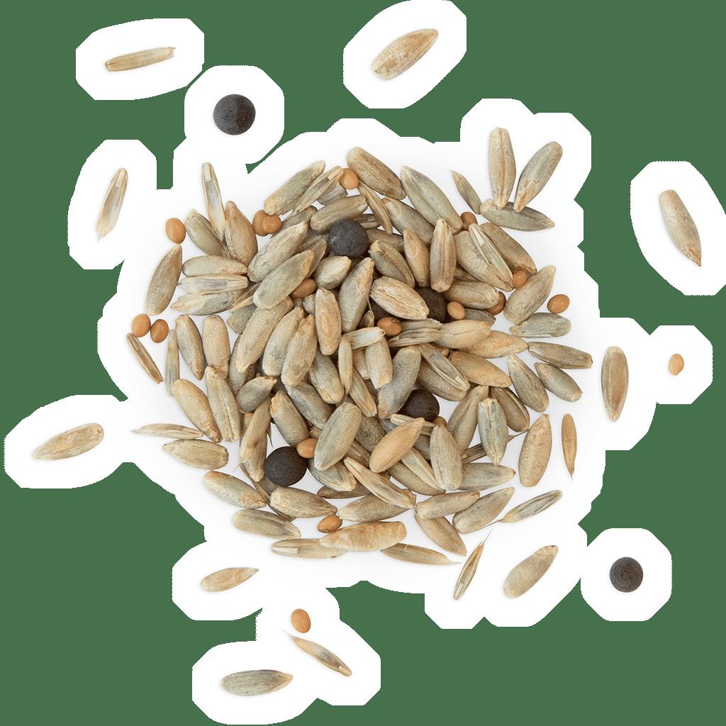 MFG 6.2 Proteinreiche Futtermischung