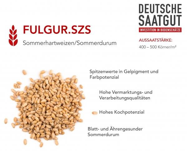 SOMMERDURUM FULGUR.SZS