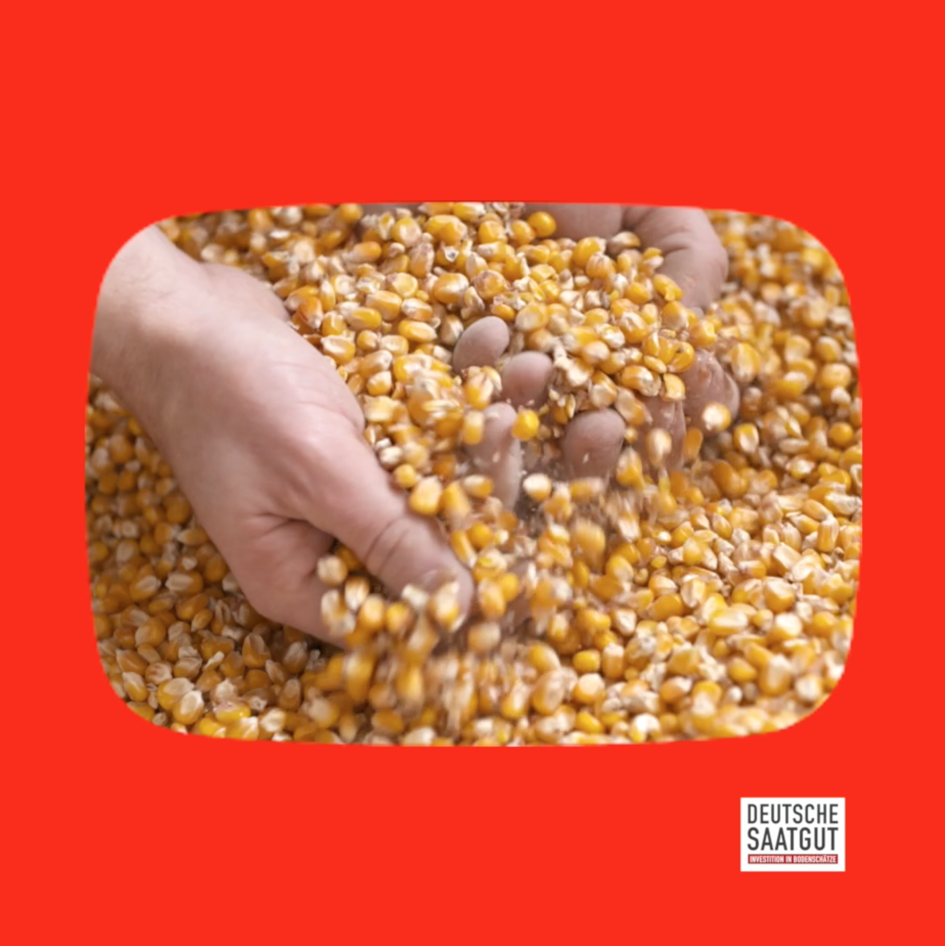 MFG Deutsche Saatgut auf YouTube