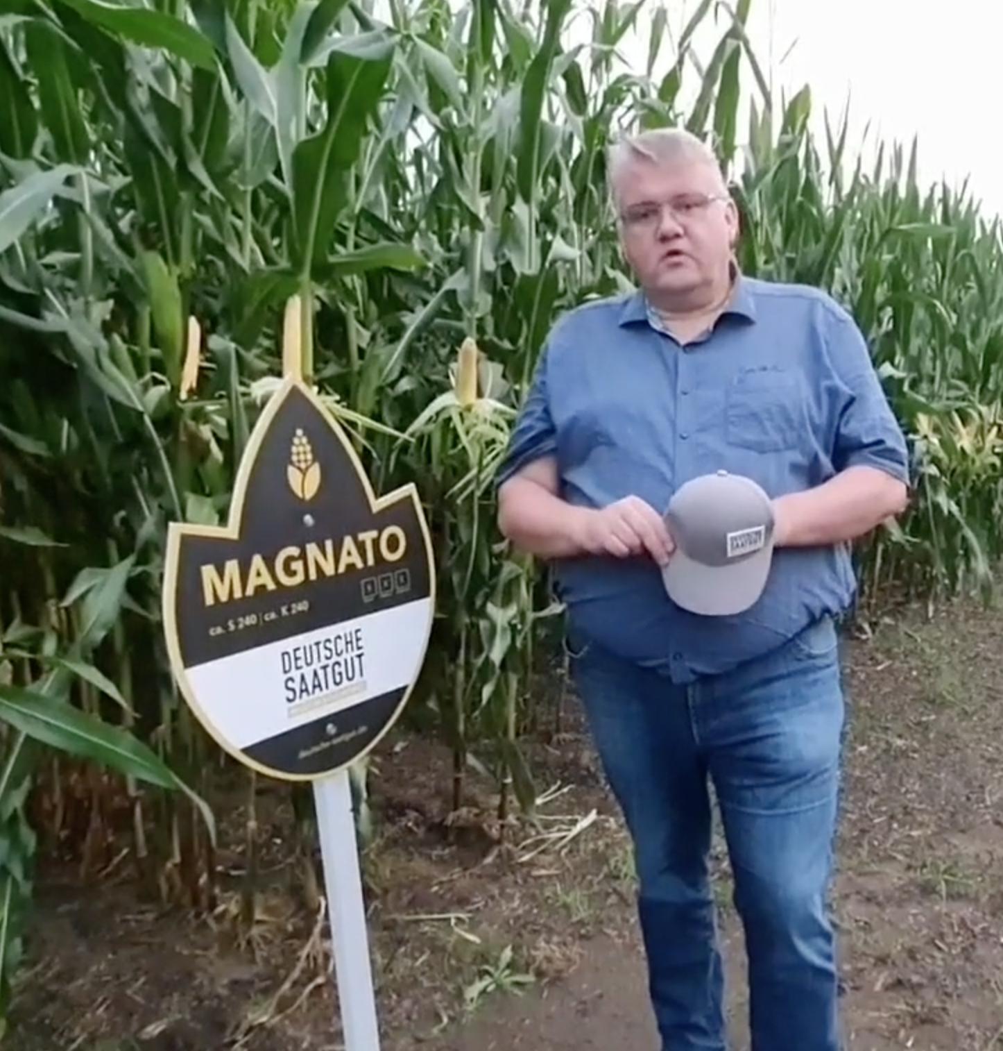 Mais-Versuch in Stemwede (NRW)