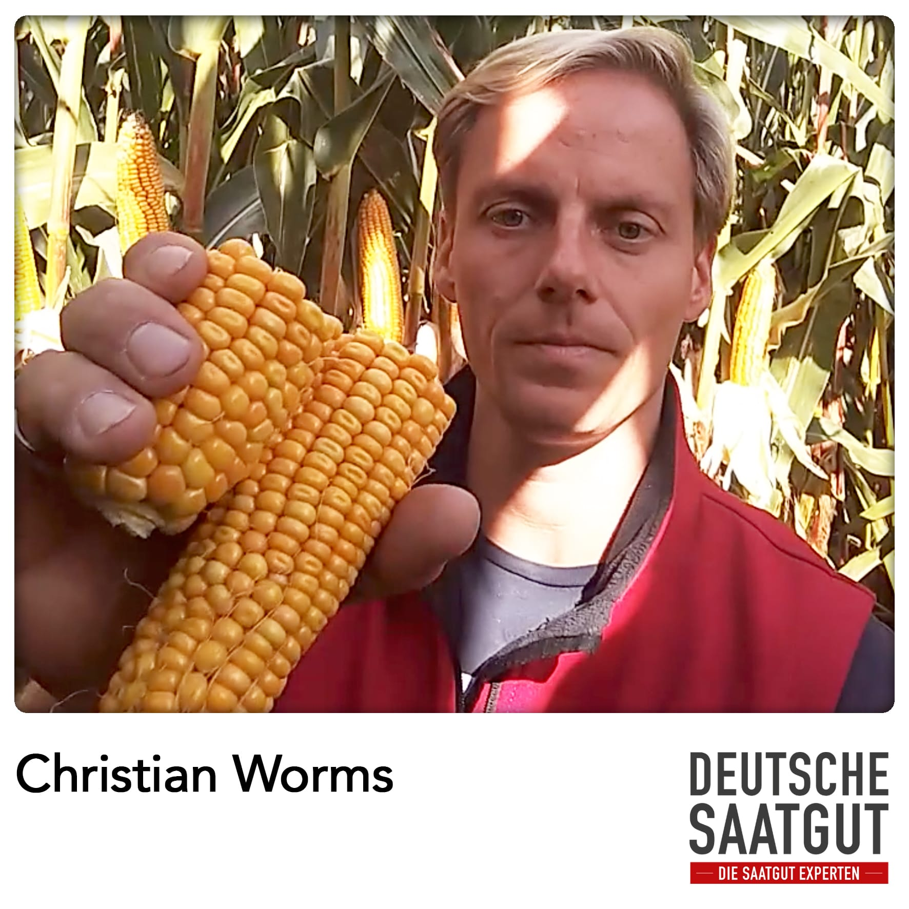 Christian Worms beim Mais-Exaktversuch in Bülow (Mecklenburg-Vorpommern)