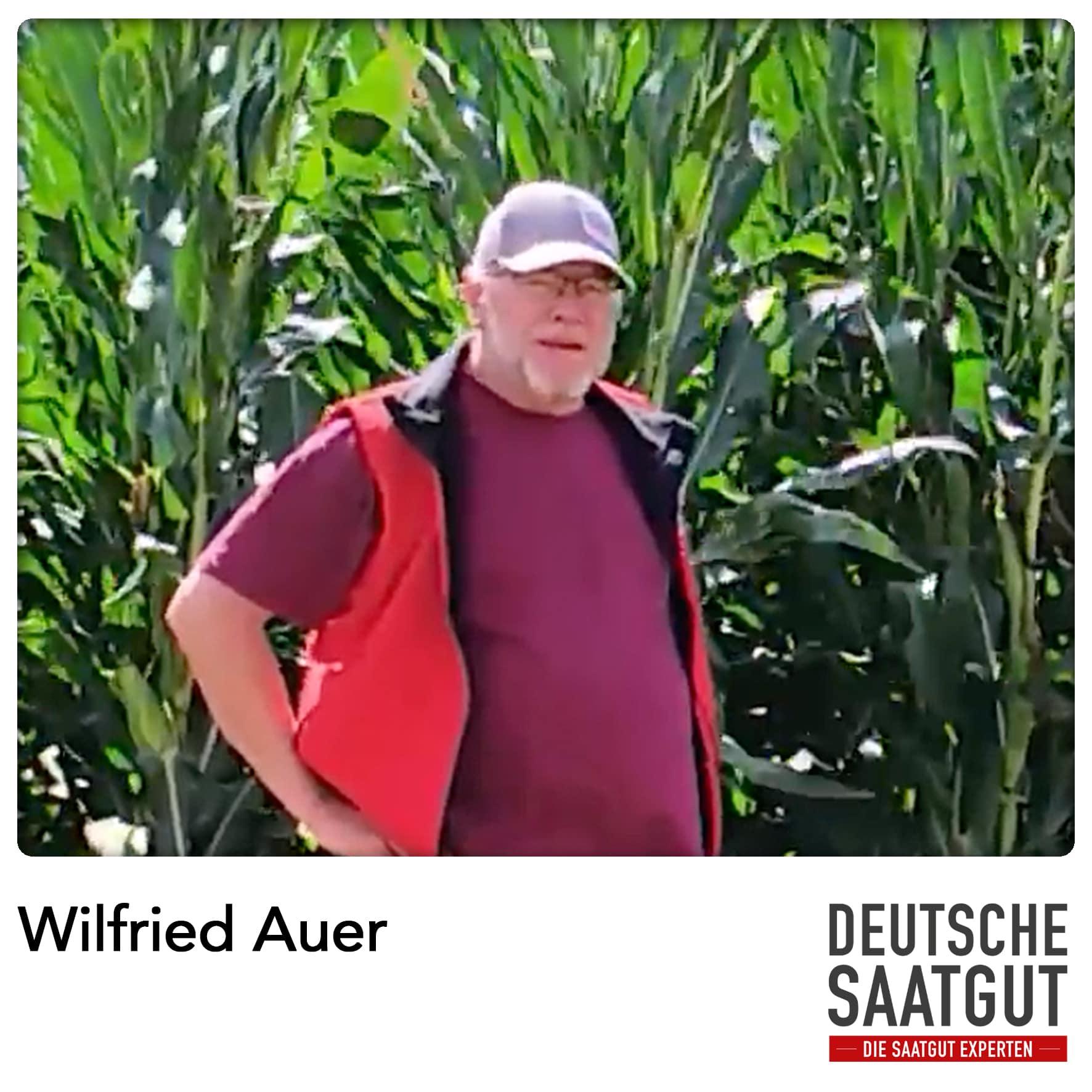 Wilfried Auer beim Mais-Demoversuch in Baden-Württemberg.