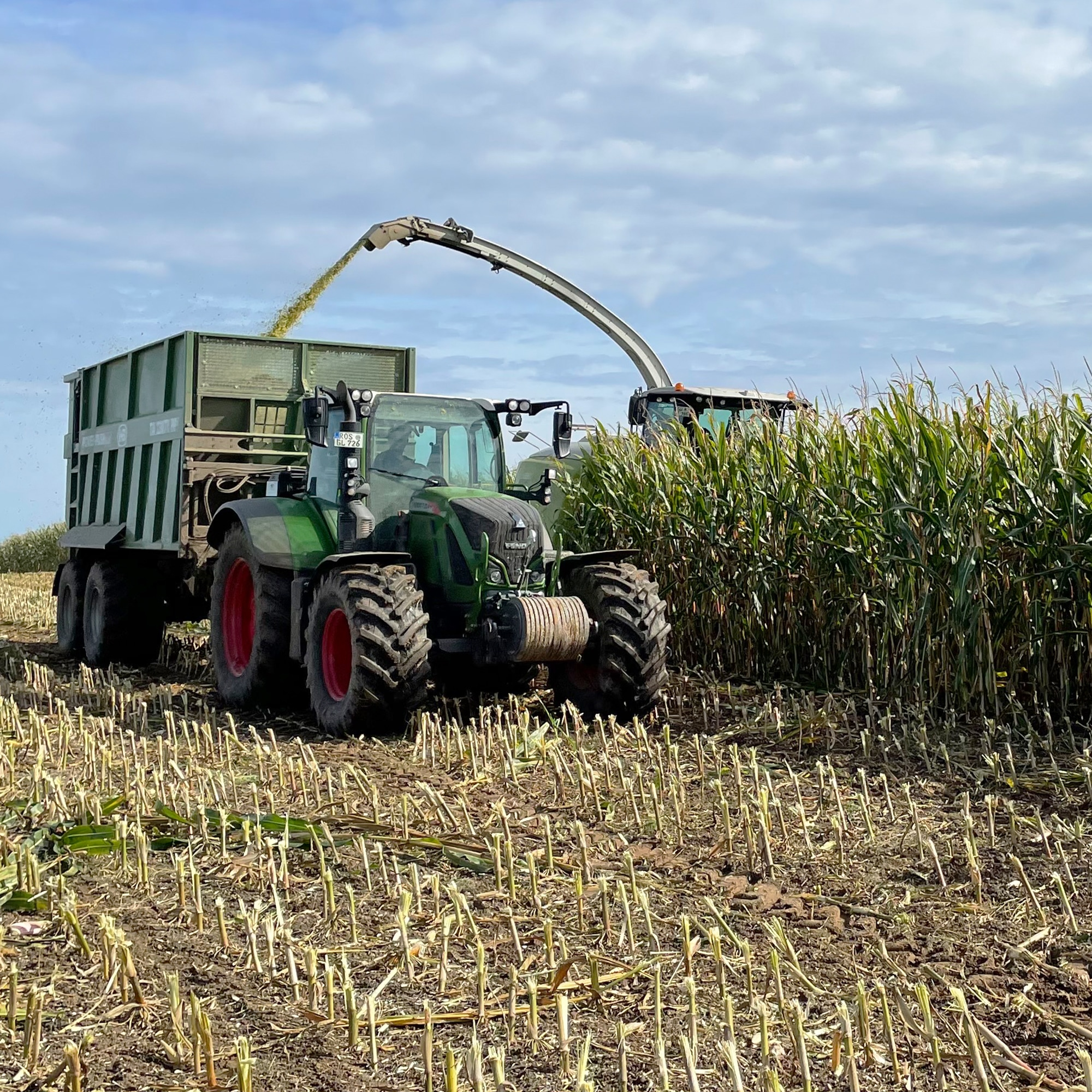 In weiten Teilen Deutschlands erreicht die Maisernte 2021 ihren Höhepunkt.